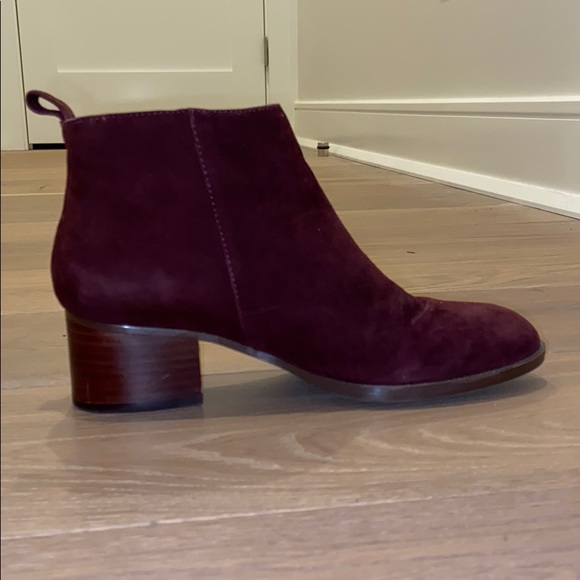 Tommy Hilfiger Shoes - tommy hilfiger booties